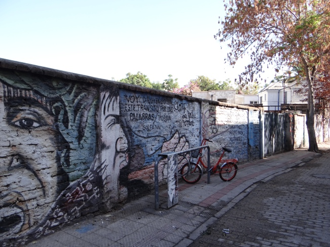 Santiago is filled with beautiful street art!