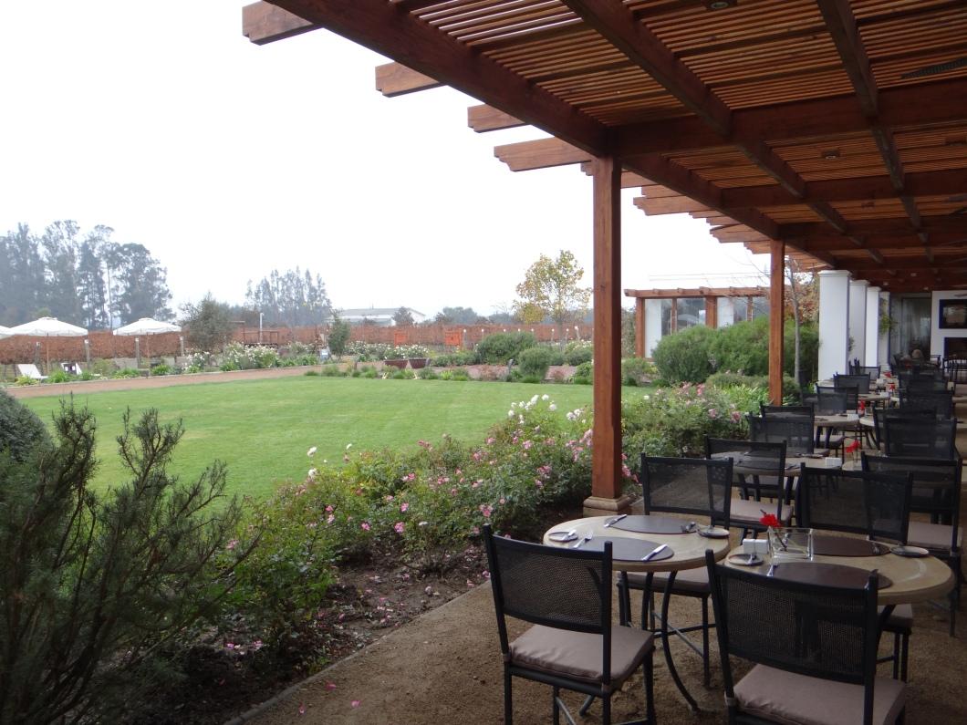 Cassablanca the winery I visited near Santiago!