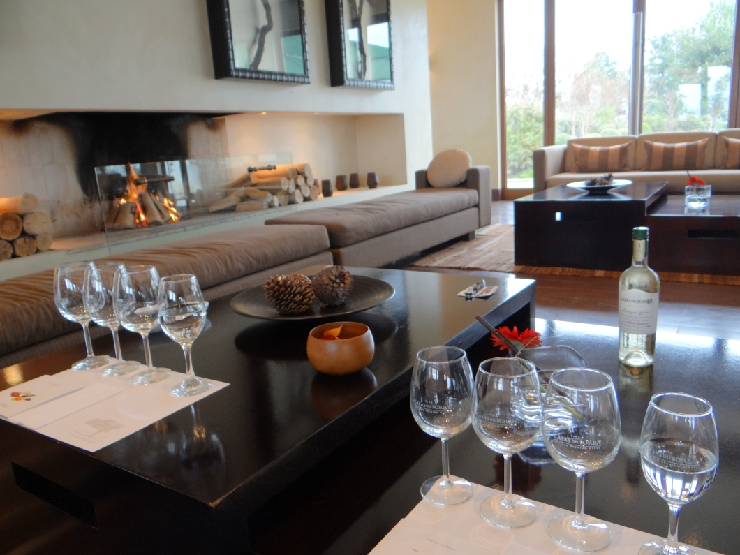 What a fabulous place to enjoy some excellent Chilean wine