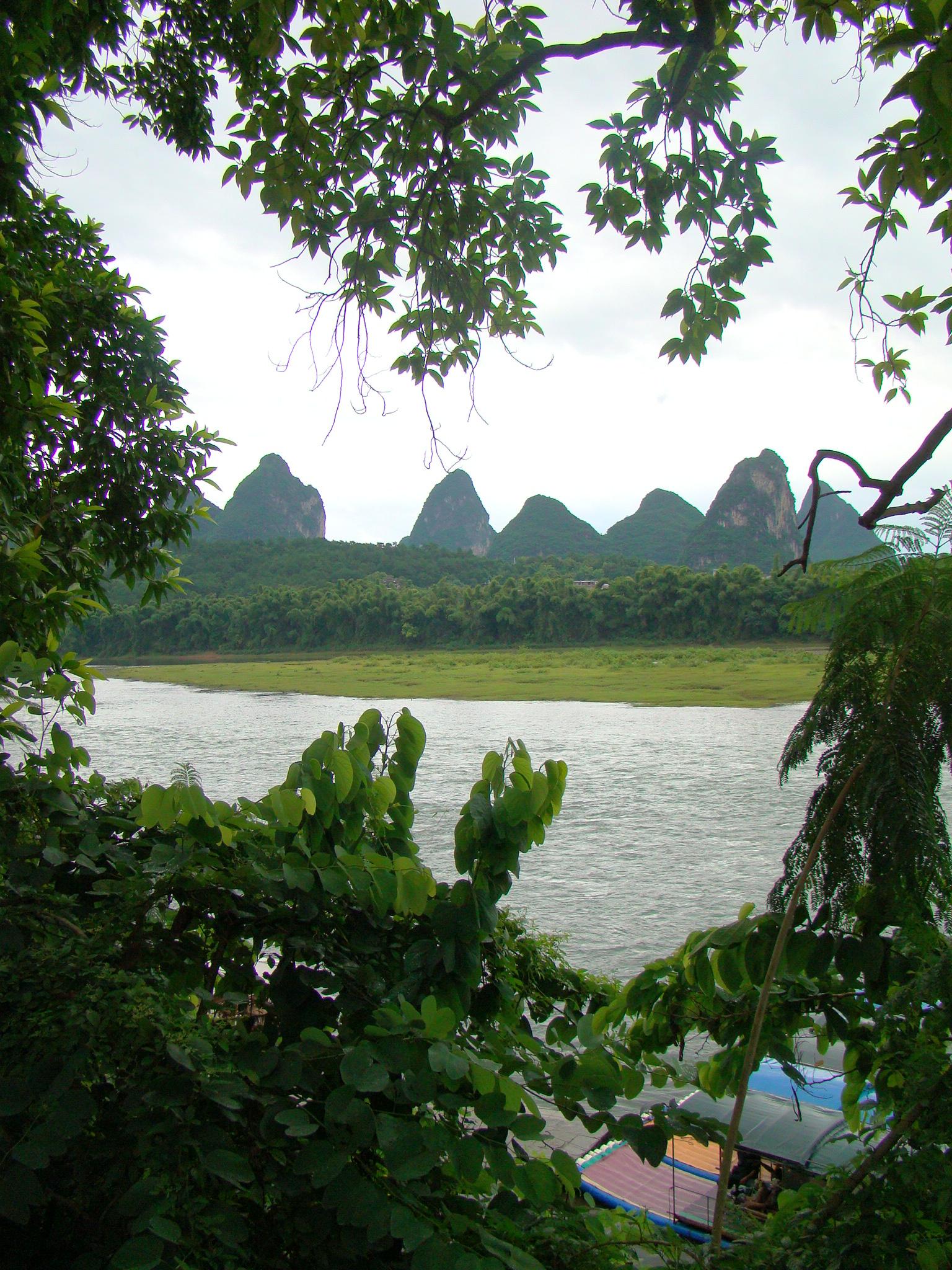 Cormorant fishing birds in mountain shrouded Yangshuo