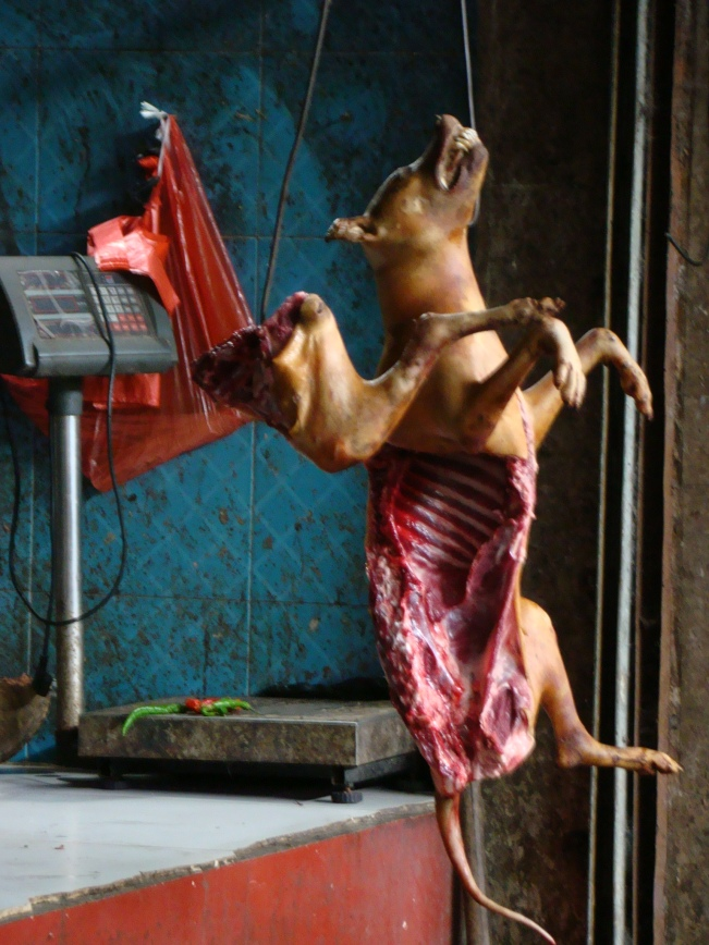 Skinned dogs hanging from hooks....