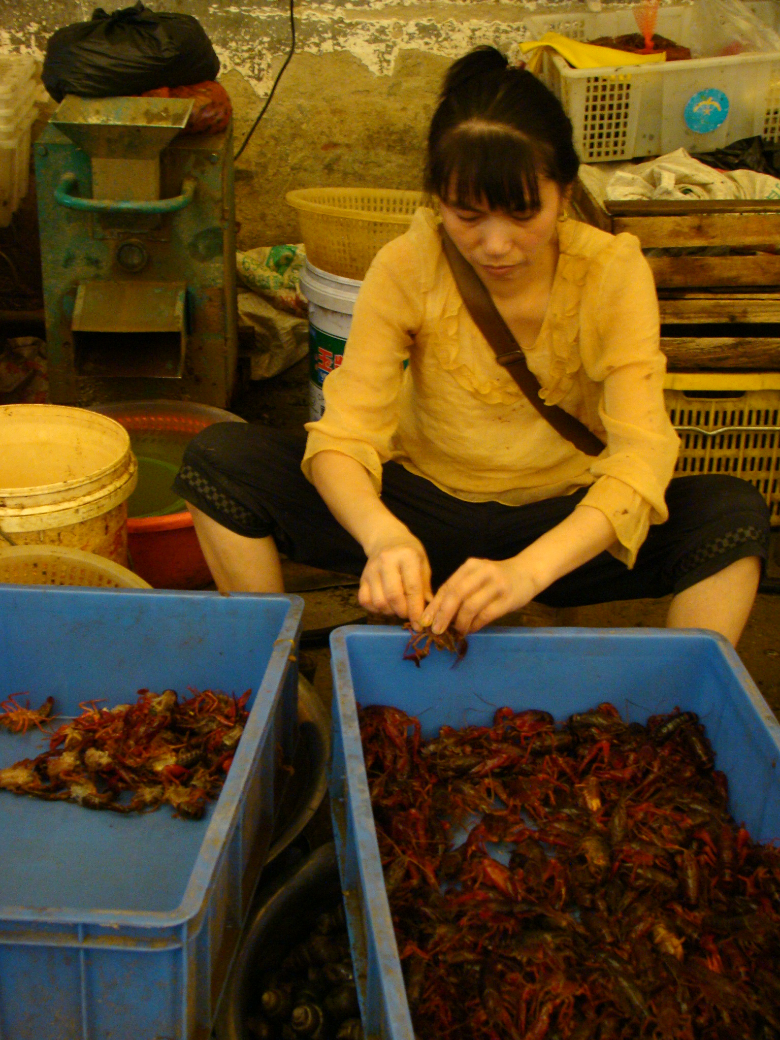 Squirming eels, frogs, snails and even skinned dogs at Yangshuo wet market