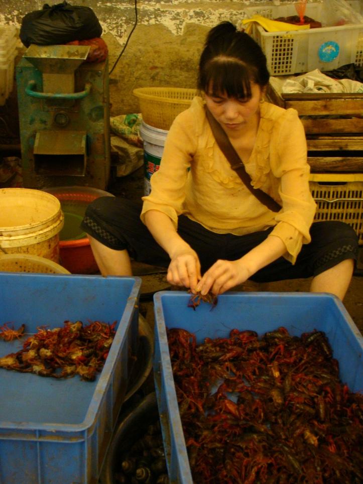 Hard at work cleaning prawns