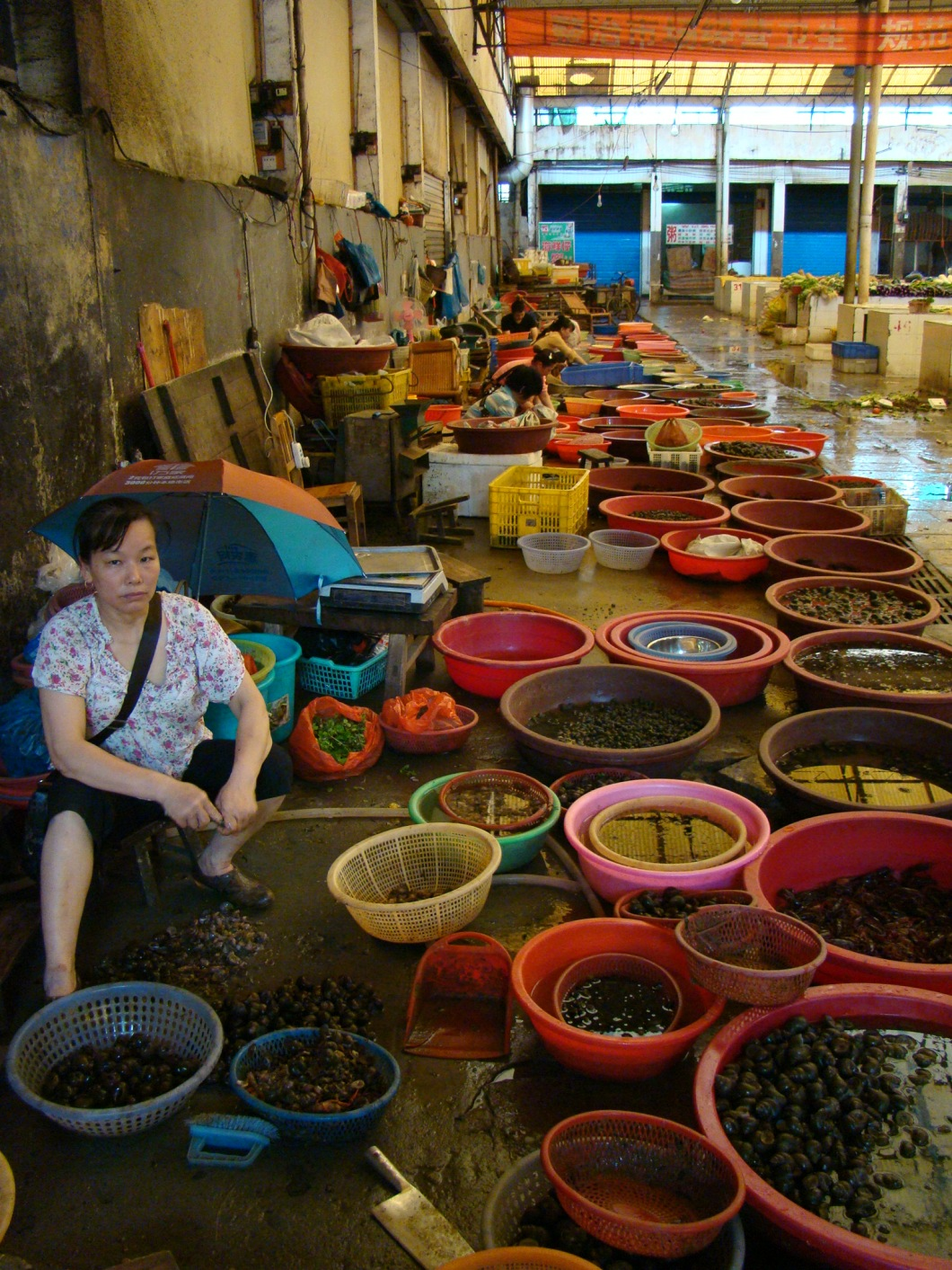 Rows of buckets filled with live produce