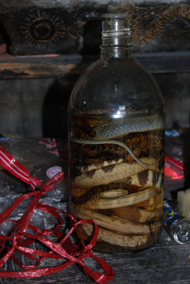 Are you brave enough to drink this snake wine?