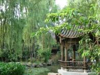 The Bonzai garden