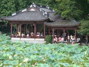 The lotus pont on the island
