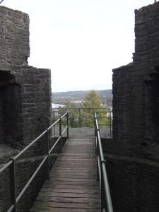 Wooden walkways cross the towers