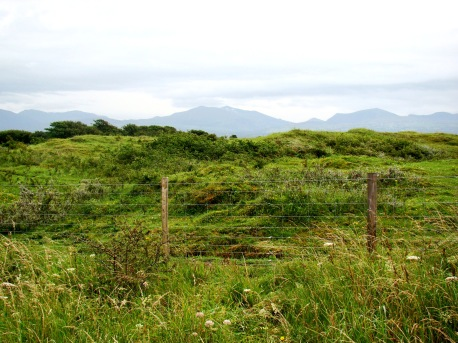 The striking Anglesey countryside