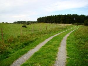 Newborough Warren (Ynys Llanddwyn), National Nature Reserve