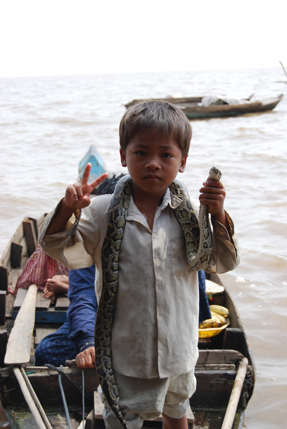 Giant water snakes and crocodiles at  Siem Reap's Floating Villages