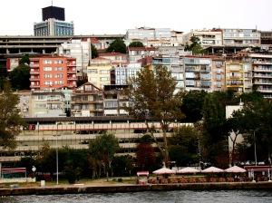 Bosphorus river cruise