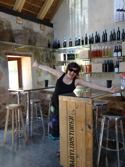 Wine tasting at Babylponstoren