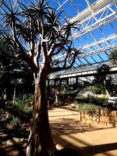 Botanical Society Conservatory