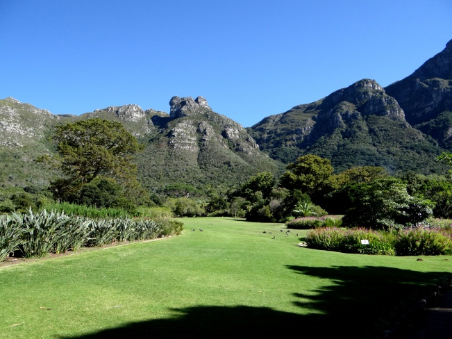 View roughly to the north from Kirstenbosch