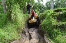 quad bike through the rice paddies of Bali