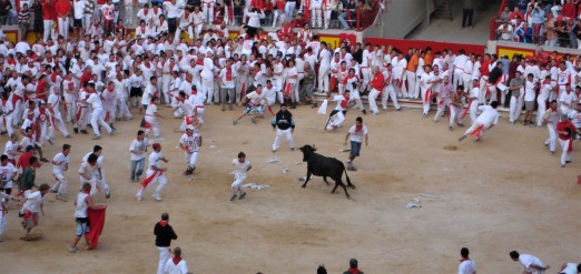Running of the bulls in Pamplona, Spain