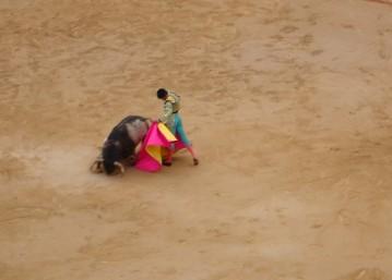The Blood sport Bullfighting