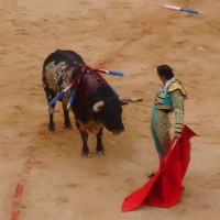 The Blood sport Bullfighting should be banned.