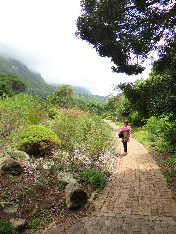 Kirstenbosch The Most Beautiful Garden In Africa