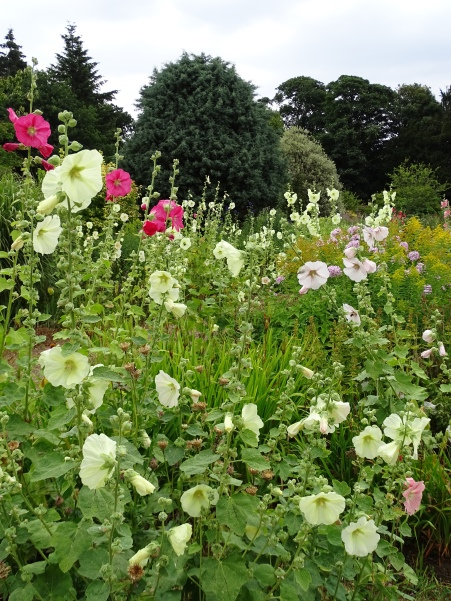 West Acre Garden in Norfolk