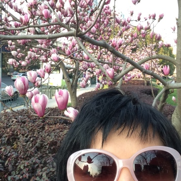 Me with the beautiful magnolia blossoms